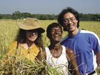 Lotus Foods: Changing the World One Grain of Rice at a Time