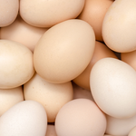 US to Allow Imports of Dutch Egg Products