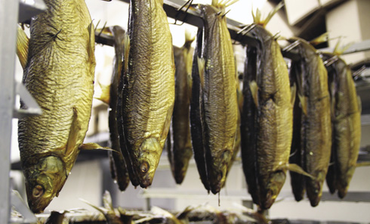 Factory Tour: Acme Smoked Fish Corporation