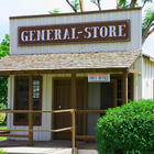 Historic General Stores Fight Back