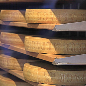 Cheese Focus: A New Age for Swiss Cheese