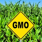 Agriculture Secretary Proposes Compromise on GMO Labeling