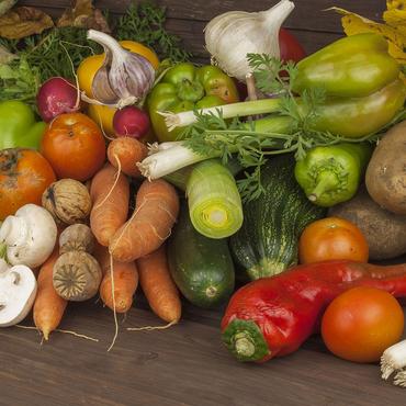 the vegan diet plan