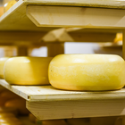 US Champion Cheese Contest Receives Thousands of Entries