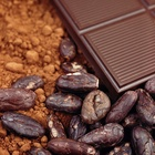 Niche Bean-to-Bar Chocolate Production Shows Rapid Growth