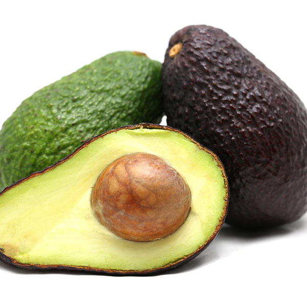 Mexico Considers Importing Avocados | News