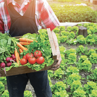 Organic Sales Continue to Outpace Previous Years